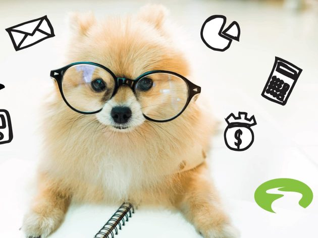 dog wearing glasses with iconography around him