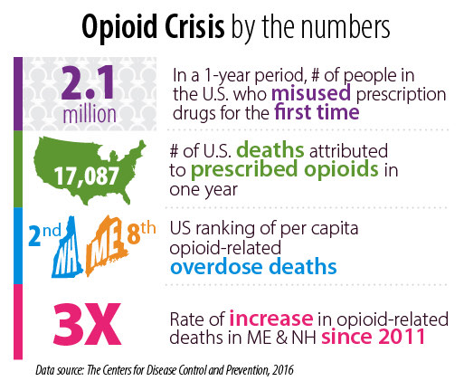 Graphic showing high number of opioid deaths